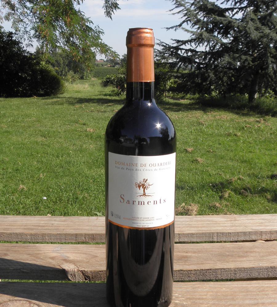 Sarments vins IGP Cotes de Gascogne